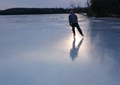 Shawn skates